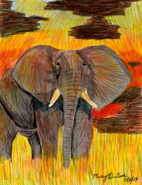 Marcy Deutsch African Elephant