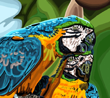 Pamela Williamson Blue and Gold Macaw
