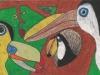 Kaylin Mangold Toucan Paradise