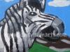 Joel Anderson Zebra