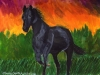 Marcy Deutsch Black Horse Against Burning Sky