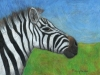 Marcy Deutsch Zebra