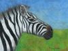 Marcy Deutsch Zebra