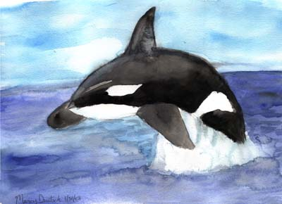 Marcy Deutsch Leaping Orca