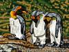 Pamela Williamson 3 Penguins in Courtship