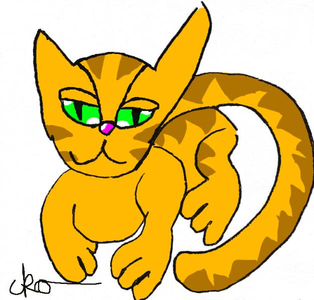 kayleigh_cartooncat