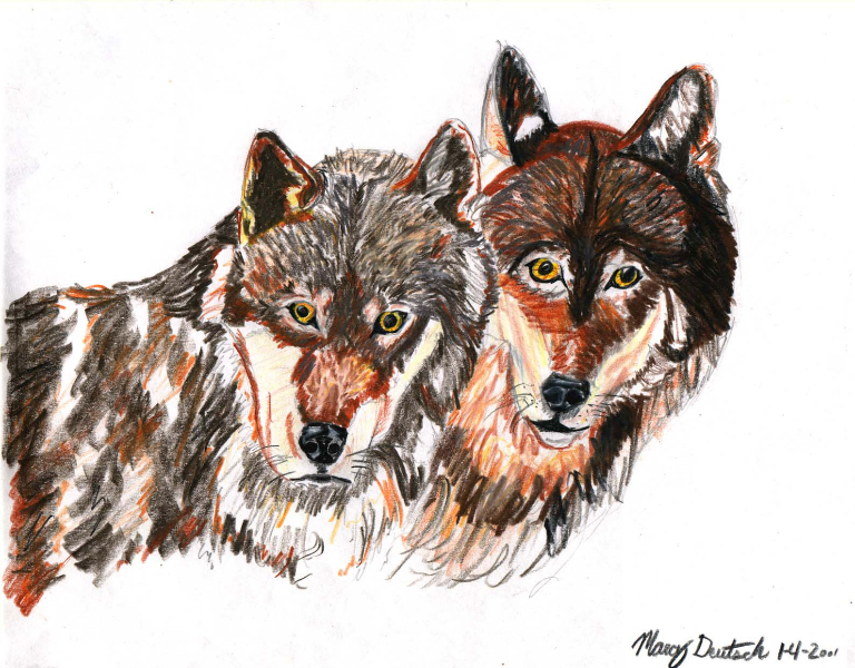 Marcy Deutsch 2 Wolves