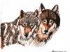 Marcy Deutsch 2 Wolves