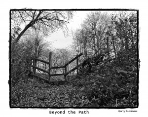 beyond the path3