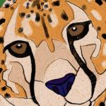 "Joel Anderson ""Cheetah"""